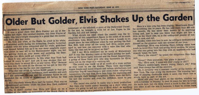 elvis article.jpg